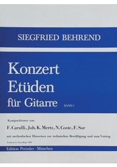 Konzert-Etüden für Gitarre. Bd. 1